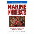 A Pocket Expert Guide Marine Invertebrates